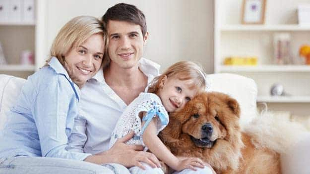 Wills & Trusts dog-young-family Direct Wills Maidenhead